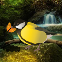 Amazon Birds Forest Escape game - Play and Download free online flash games - at WowEscape