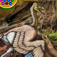 Free online flash games - Archaeopteryx Bird Forest Escape game - WowEscape