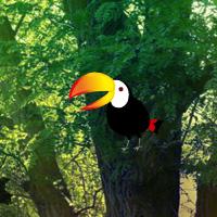 Free online flash games - Bio Forest Escape game - WowEscape