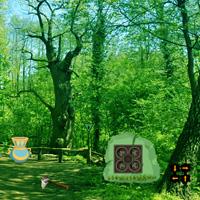Free online flash games - Escape from Coniferous Landscape game - WowEscape