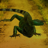 Free online flash games - Escape from Lizard Forest game - WowEscape