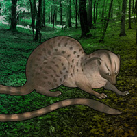 Free online flash games - Escape Game Save the Civet Cat game - WowEscape