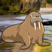 Free online flash games - Escape Game Save the Walrus