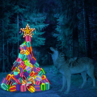 Free online flash games - Escape Game Wild Moon Christmas game - WowEscape