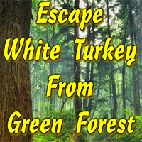 Free online flash games - Escape White Turkey From Green Forest game - WowEscape