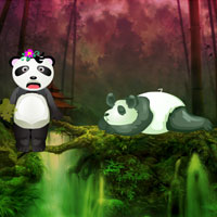 Wow Giant Panda Forest Es…