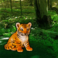 Free online flash games - Help the Lonely Tiger Cub game - WowEscape