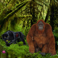 Free online flash games - Jungle Book Forest Escape game - WowEscape