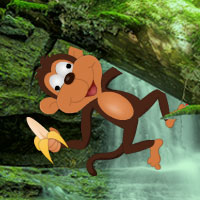 Free online flash games - Mad Monkey Forest Escape game - WowEscape