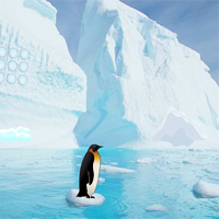 Free online flash games - Penguin Escape Home Back game - WowEscape