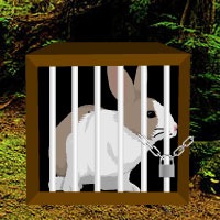 Free online flash games - Rain Forest Rabbit Escape game - WowEscape