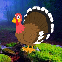 Free online flash games - Redwood Forest Turkey Escape game - WowEscape