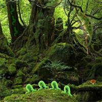 Free online flash games - Wow Reptiles Forest Escape game - WowEscape
