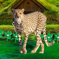 Free online flash games - Save The Mountain Cheetah game - WowEscape