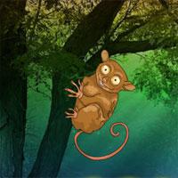 Free online flash games - Tarsier Fantasy Forest Escape game - WowEscape