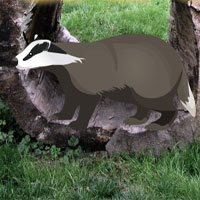 Free online flash games - Wild Badger Rescue game - WowEscape