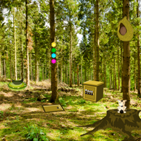 Free online flash games - Wow Summer Forest Escape game - WowEscape