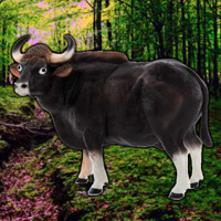 Free online flash games - WowEscape Save The Gaur