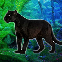 Free online flash games - WowEscape Save The Panther game - WowEscape