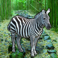 Free online flash games - WowEscape Save the Zebra game - WowEscape