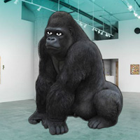 Free online flash games - WowEscape Save The Gorilla game - WowEscape