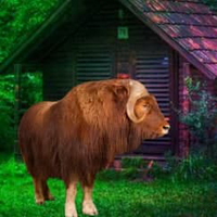 Musk Ox Forest Escape HTML5