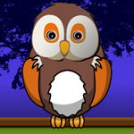 Free online flash games - Successful Owl game - WowEscape