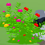 Free online flash games - Tortoise Escape old game - WowEscape