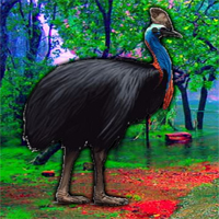 Free online flash games - G2R Escape Game Save The Cassowary game - WowEscape