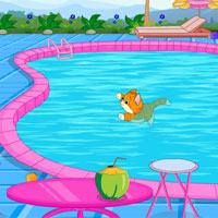 Play Cat Escape From Swimming Pool At To Play Escape Games
