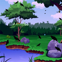 Free online flash games - Escape From Crow Forest