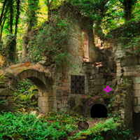 Free online flash games - Demolished Forest Fort Escape Games2rule game - WowEscape
