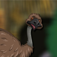 Free online flash games - Avm Emu Bird Escape