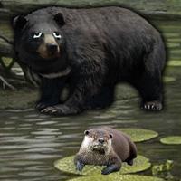 Free online flash games - Otter Escape game - WowEscape