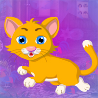 Free online flash games - Games4King Pitiful Cat Escape