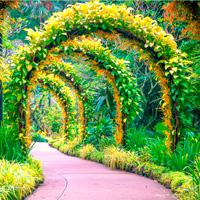 Free online flash games - City Botanic Garden Escape game - WowEscape