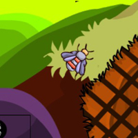 Free online flash games - G2M Squirrel Land Escape