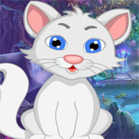 G4k White Cat Rescue