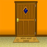 Escape Orange Colored Room