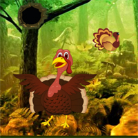 Free online flash games - G2R Giant Turkey Forest Escape