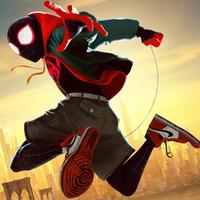 Free online flash games - Spider-Man Hidden Spots game - WowEscape