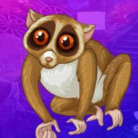 Free online flash games - G4K Slender Loris Escape game - WowEscape