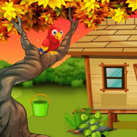 Free online flash games - G2J Tree Squirrel Escape