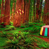 Free online flash games - G4K Eco Forest Escape