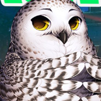 Free online html5 games - G4K Lovely Owl Escape game