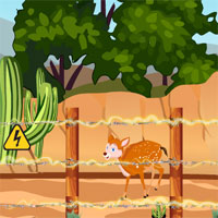 Free online flash games - Deer Rescue EscapeGamesDaily