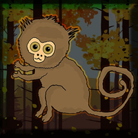 Free online flash games - Games2Jolly Pygmy Marmoset Escape game - WowEscape