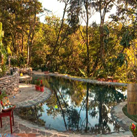 Escape From Monteverde Lodge And Gardens