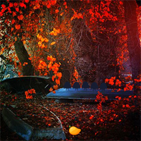 Free online flash games - Mirchi Games  Red Autumn Forest