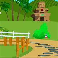 Petty Monkey Rescue